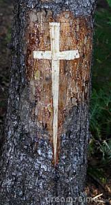 cross-carved-tree-12690430